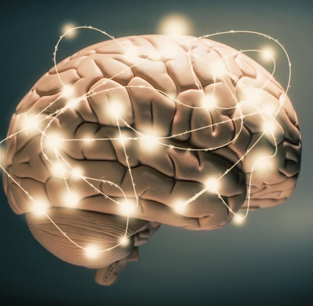 Человеческий мозг не похож на компьютер