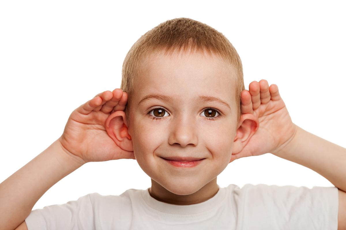 За интеграцию слуха и осязания отвечает слух
